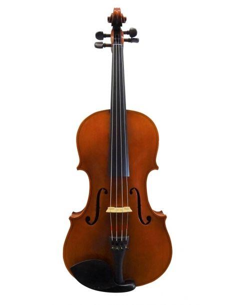 Viola Bratsche David Lien,...