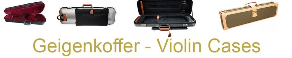 cases and bags for violin